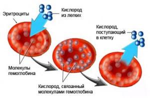 низкий гемоглобин месячные