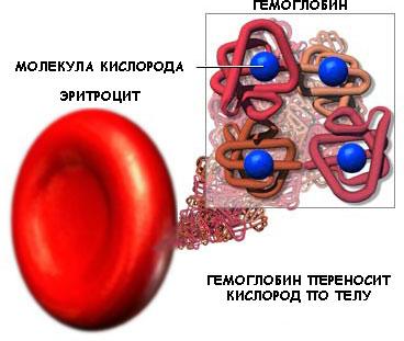 низкий гемоглобин после месячных