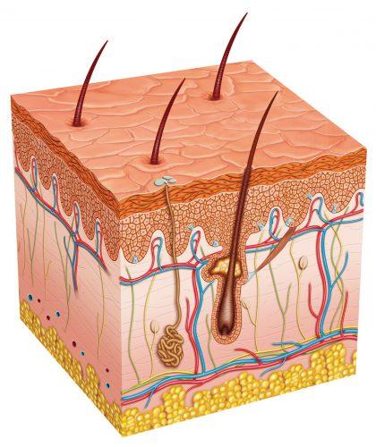 Волосы во время месячных